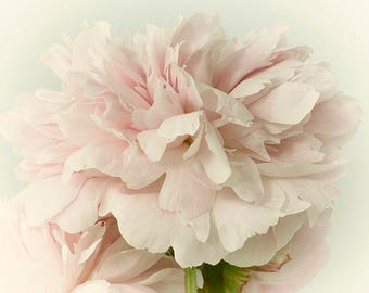 Pink Peony Print,  Flower Photography, Floral Art Print, French Country Decor, Pastel Wall Art