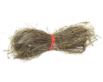 Yucca Natural Fiber Baskets Crafts Coiling Cordage Basketry Organic Hand Processed Native American Plant Material Coiled Basket Accent