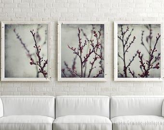 Merveilleux Botanical Photography, Print Set Of 3, Gray Wall Art, Burgundy Wine Red,