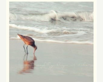 SALE beach photography, bird photograph, soft sea, nautical pale silvery blue seaside, nursery art, peaceful waves sand piper 5x5