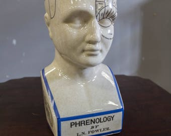 Vintage Phrenology Head from 1970s Authentic