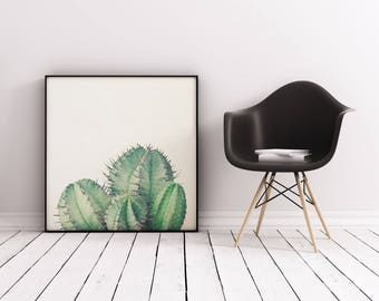 Cactus Print, Minimal Botanical Art, Gift for Gardener, Kitchen Wall Art - African Milk Barrel