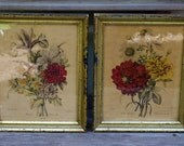Pair of Vintage Botanical Flower Prints Ange Wasset, Borghese