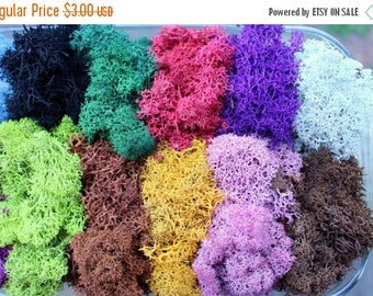 Save25% Reindeer moss-Terrarium accessories-1 oz bag in 16 colors-Deer foot Moss-Black-Mango-Red-Gray-Purple-Blue- 1 Oz. Bag Preserved Liche