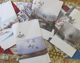 Lot of 7 Unique Vintage Bird Fold a Notes Pheasant Duck Geese