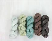 MINI SKEIN sock yarn set, FAVE sock: Daria