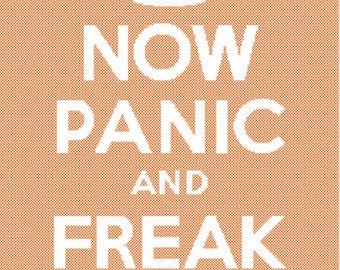 Now Panic and Freak Out with Fractional Stitches Cross Stitch Pattern PDF