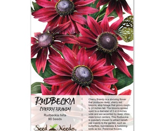 Rudbeckia Seeds, Cherry Brandy (Rudbeckia hirta) Open Pollinated Seeds by Seed Needs