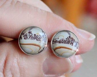 Tumbleweed  - Chohua Jasper Sterling Silver Stud Earrings
