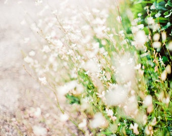 Spring Art, Floral Art, Square Artwork, Floral, Flowers, Farmhouse Art, White Art, Green, Beach House Art, Large Artwork, Square Artwork