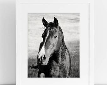 Classic Horse Portrait in Black and White, Equestrian Art, Western Horse Art, Physical Print