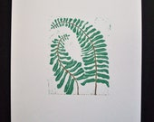 Prints--Ferns