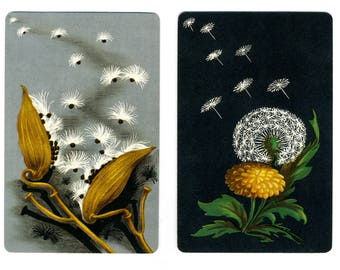 DANDELIONS (2) Vintage Single Swap Playing Cards Paper Ephemera Scrapbook