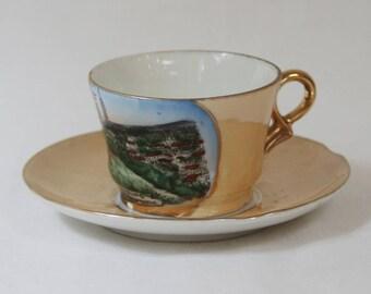 Vintage Souvenir Demitasse Cup & Saucer, Peach Luster, Germany.
