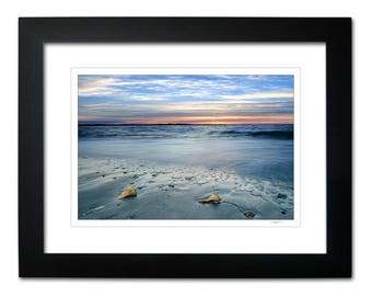 Framed Matted Beach Photography, Sunrise Shore Art, Ocean, Sand, Conch Shells, Ready to Hang Wall Decor