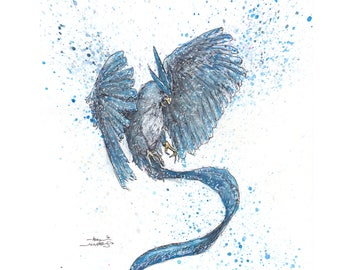 Articuno 11x14 Signed and Numbered Art Print