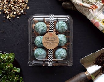 Milkweed Earth Seed Bomb-Mothers Day-Hostess Gift-Gift Under 20-Green Thumb