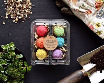 Organic Salsa Garden Rainbow Seed Bomb-Mothers Day-Hostess Gift-Gift Under 20-Green Thumb