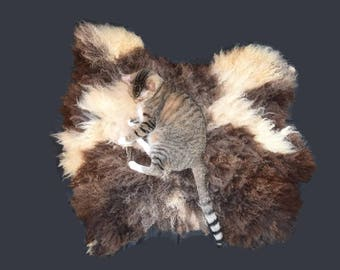 Cruelty Free, FinnSheep, Cat Bed, Pet Bed, Dog Bed, Wool Fleece Rug, Felted Cat Bed, Throw Rug, Humane SheepSkin, Natural Cat Bed