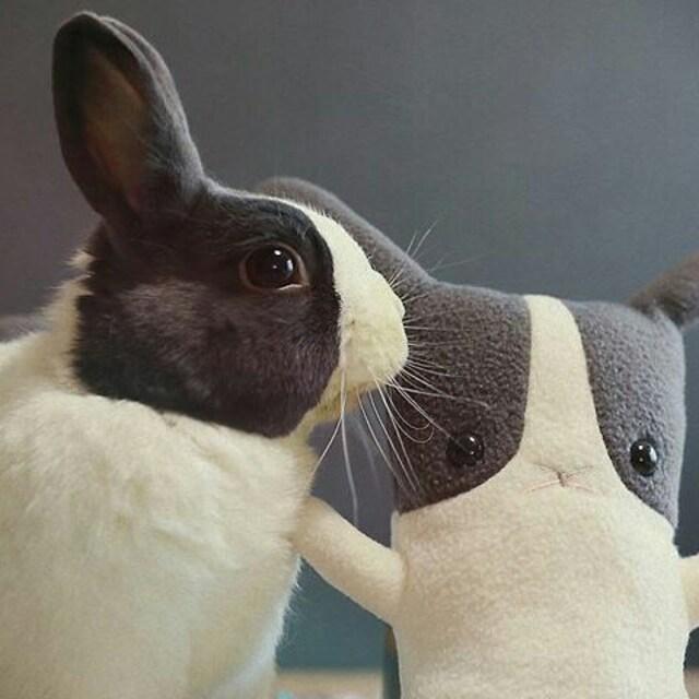 Handmade Plush Stuffed Animals Kawaii Gifts Cute By Flatbonnie