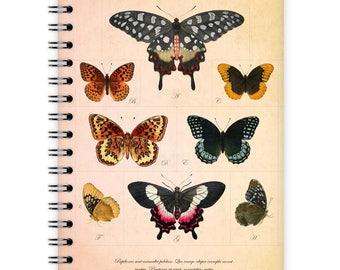 Notebook A6 - Butterfly