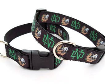 Fighting Sioux Dog Collar