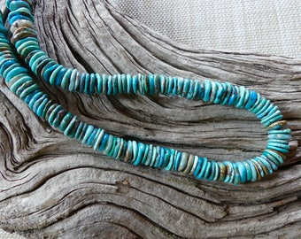 20 Inch Southwestern Shades of Blue Genuine Natural Turquoise Disk Necklace with Earrings
