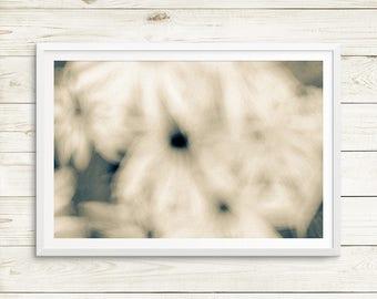 daisy abstract photograph, daisies art print, abstract flower art, abstract art print set, floral art, dreamy landscape photography prints
