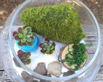Mini Terrarium Garden, Moss, Wood, Potted Artificial Succulents, Pebbles, Sand