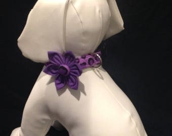 Dog Collar Flower Set - Purple Leopard Print - Size XS, S, M, L, XL