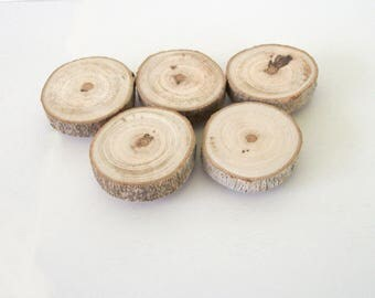 10 Maple Wood Magnets Rustic Tree Branch Home Decor