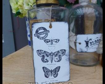 Label Xl Metal butterflies curiosity 12 cm x 7 cm