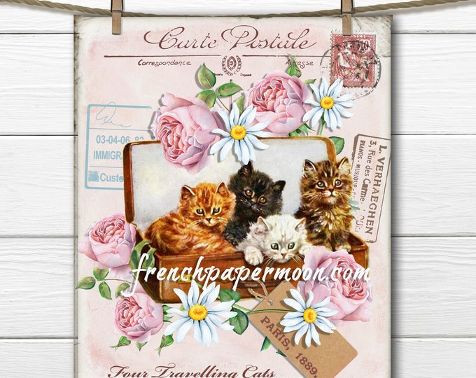 French Shabby Kittens Large Image Instant Digital Download Printable Antique Style Cat Graphic Transfer Pillow Image