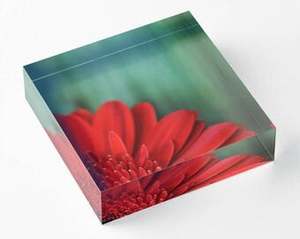 Floral Acrylic Block, Minimal Shelf Sitter, Green and Red Mantle Art, Small Art, Acrylic Photo Block, Fine Art Decor, Nature Shelf Sitter