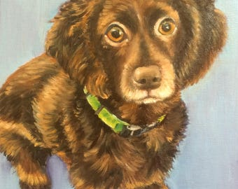 "8"" x 10"" Custom Oil Pet Painting on Canvas Panel of One Dog, Cat, Horse, bird, Other by Meredith Reynells"