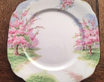 Vintage Royal Albert Blossom Time tea treat/luncheon plate