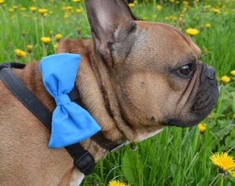 Dog Bow Tie Blue Pet Bow Tie Bowtie Collar Attachment  Model Azure. Azure color, Psiakrew, dog gift idea