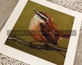 "Carolina Wren Print, 6x6"" fine art print, bird prints"