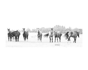 Chorus Line Fine Art Photography Western Black and White Horses Equine Rescue Texas Ranch house chic Rustic home decor large wall art