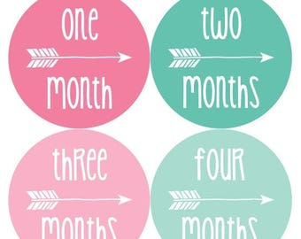 Monthly Baby Stickers Baby Month Stickers Baby Girl Monthly Shirt Stickers Monthly Baby Sticker Girl Baby Shower Photo Prop Milestone 1079
