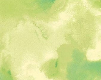 NEW RELEASE: Delaney fabric Cloud Texture 26059H light green Quilting Treasures blender craft 100% Cotton Sew Quilt per yard