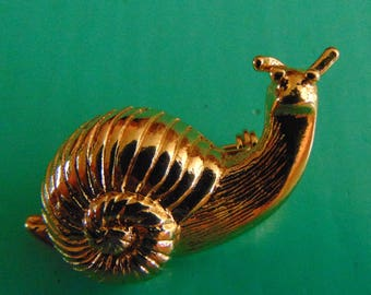 Gold tone snail brooch