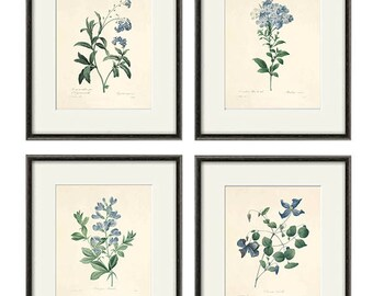 Blue botanical prints vintage flower art Cottage wall art Victorian print French wall art antique wall art Flower print Garden art print