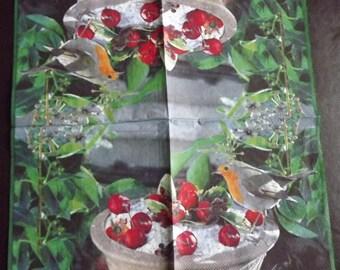 1 red throat paper towel cherries