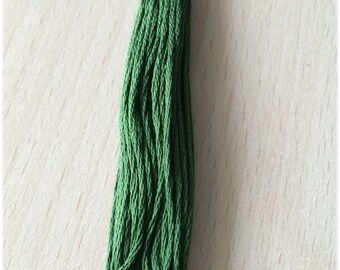 DMC stranded 3345 Hunter Green dark six strands