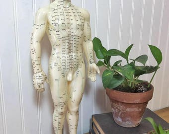 Nude medical model Nude Photos 43