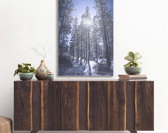 Winter Woodland Snow | Abstract Forest Sunlight | Forest Snow Vertical Print | Winter Sunshine | National Forest | Big Bear Lake California