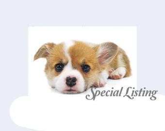 special listing -- MISS BOOTS