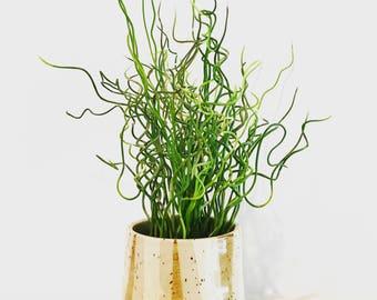 Mini Speckled Vase