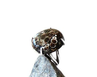 Fossil Ring in Sterling Silver - Turritella Agate - Size 7